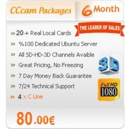 6 Months Subscription Server Europe